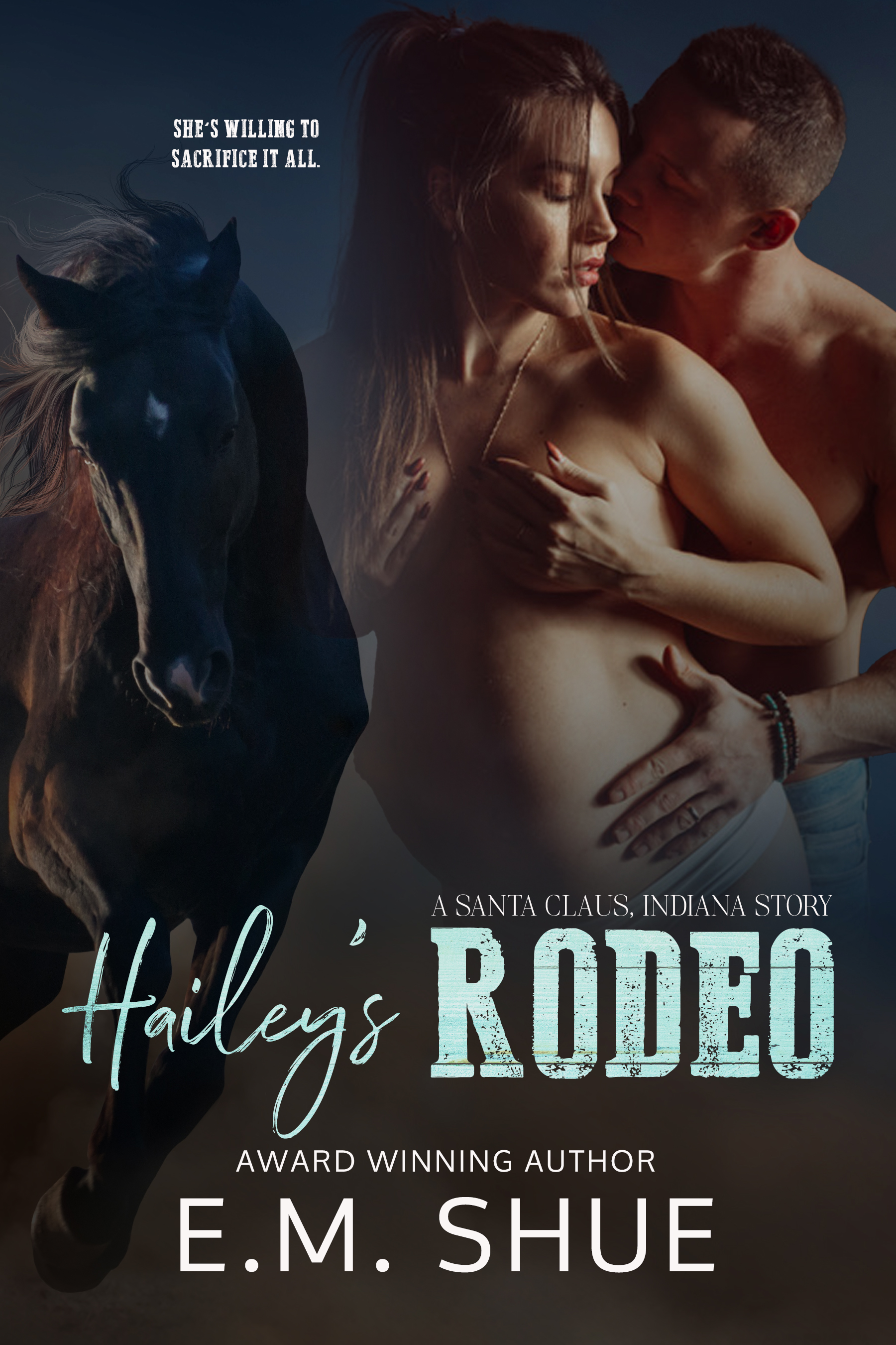 Hailey's Rodeo ebook